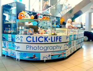 6_click-life